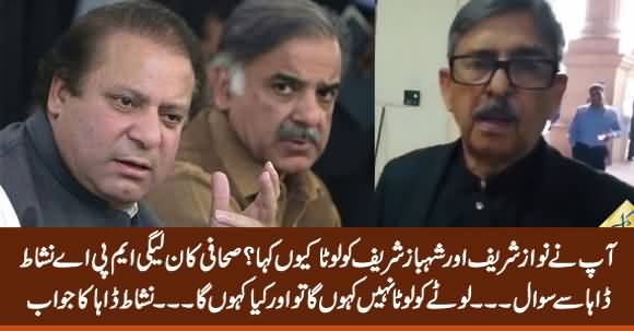 "Why You Called Sharif Brothers ""Lota""? Journalist Asks PMLN MPA Nishat Daha"
